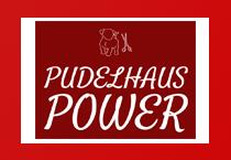 Pudelhaus Power Scheren